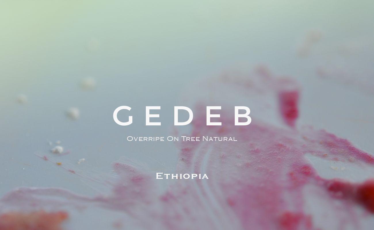 エチオピア ゲデブ オーバーライプオンツリー ナチュラル シナモンロースト 浅煎り MORIFUJI COFFEE スペシャルティコーヒー通販