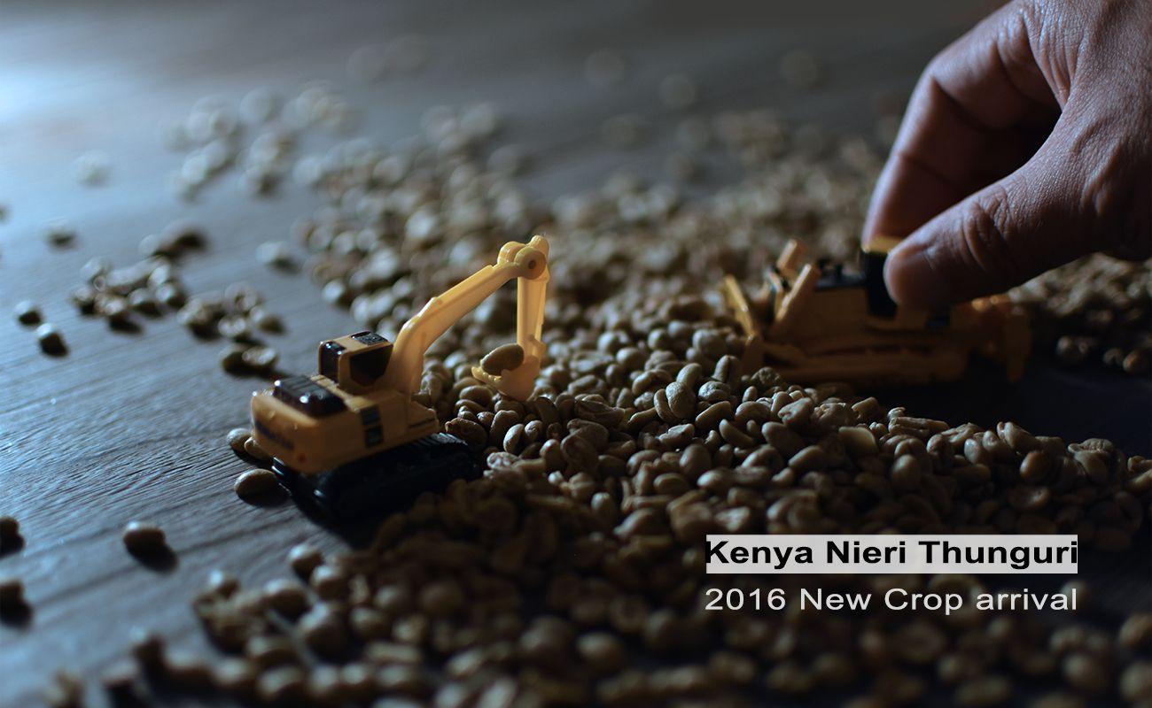 ケニア ニュークロップ 通販