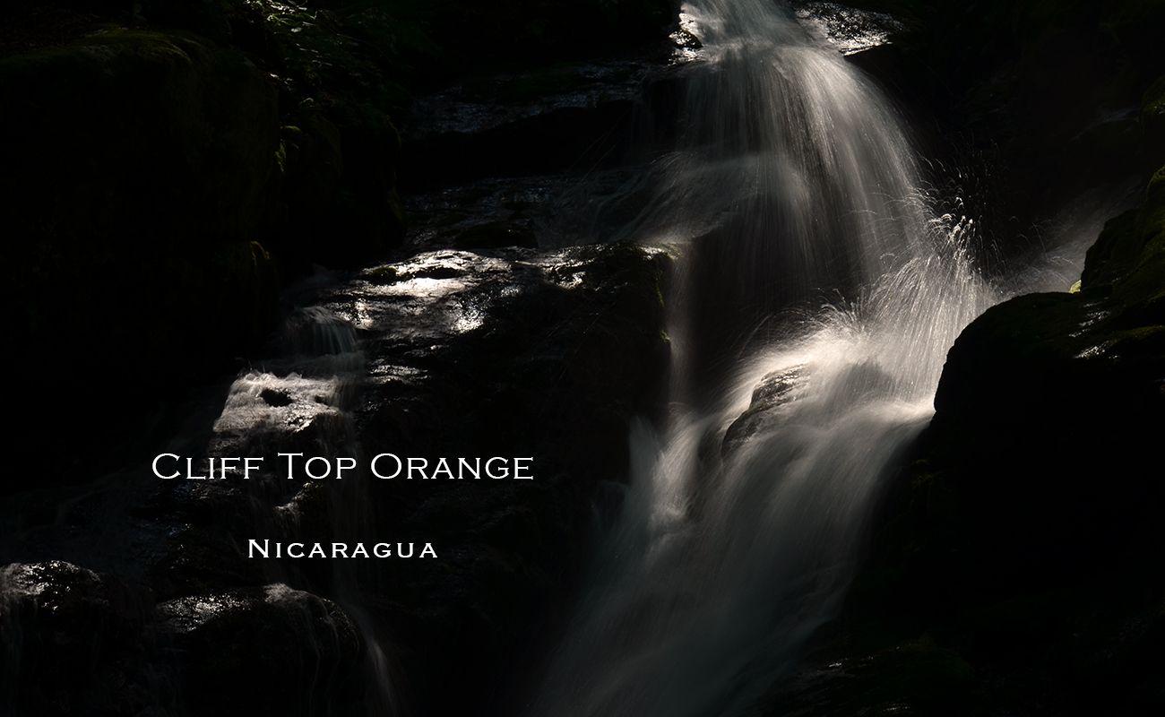 スペシャルティコーヒー通販 ニカラグア クリフトップオレンジ  ナチュラル