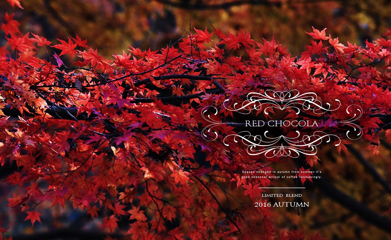 2016 AUTUMN LIMITED BLEND RED CHOCOLA