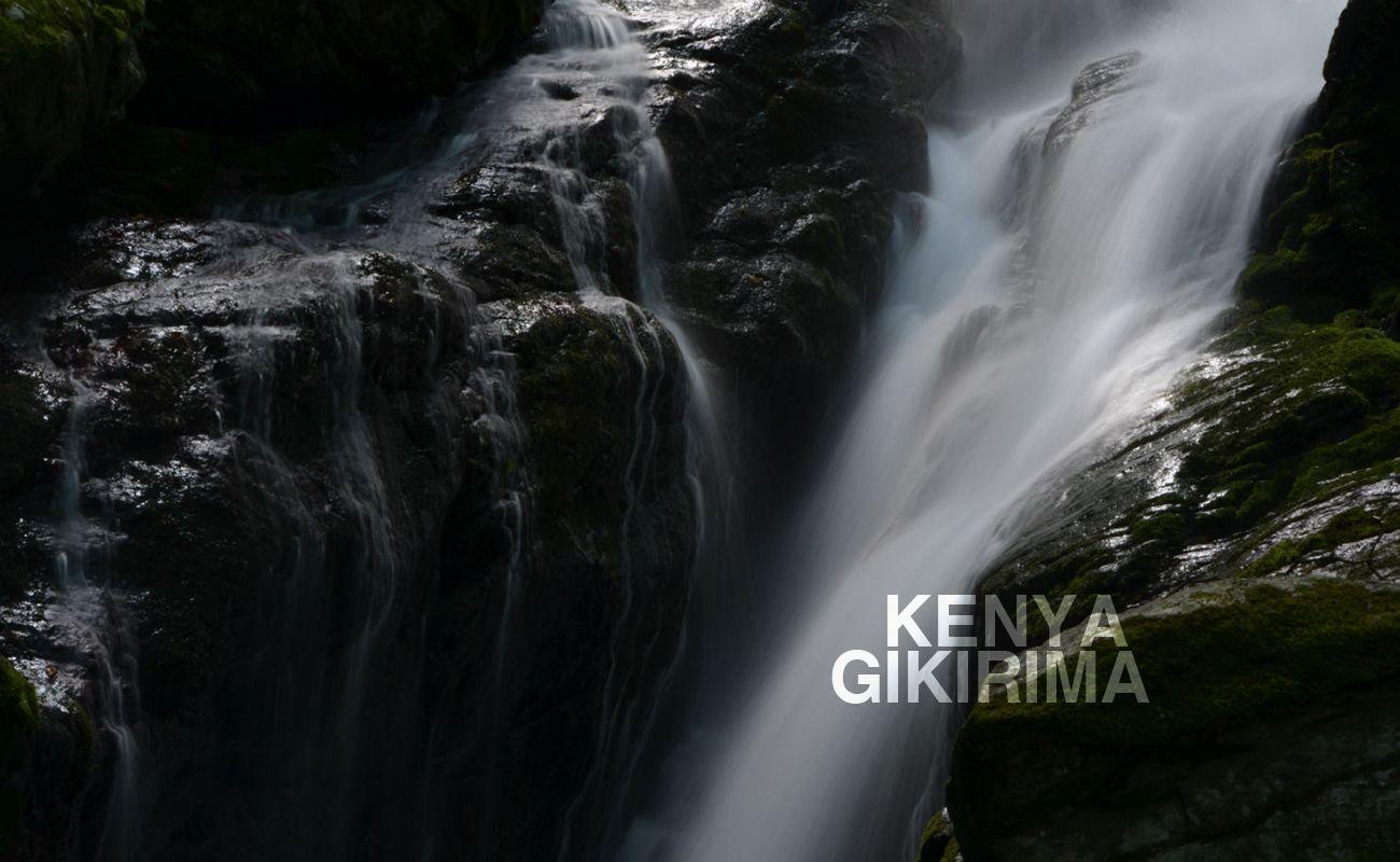ケニア ニエリ ギキリマ シティーロースト MORIFUJI COFFEE