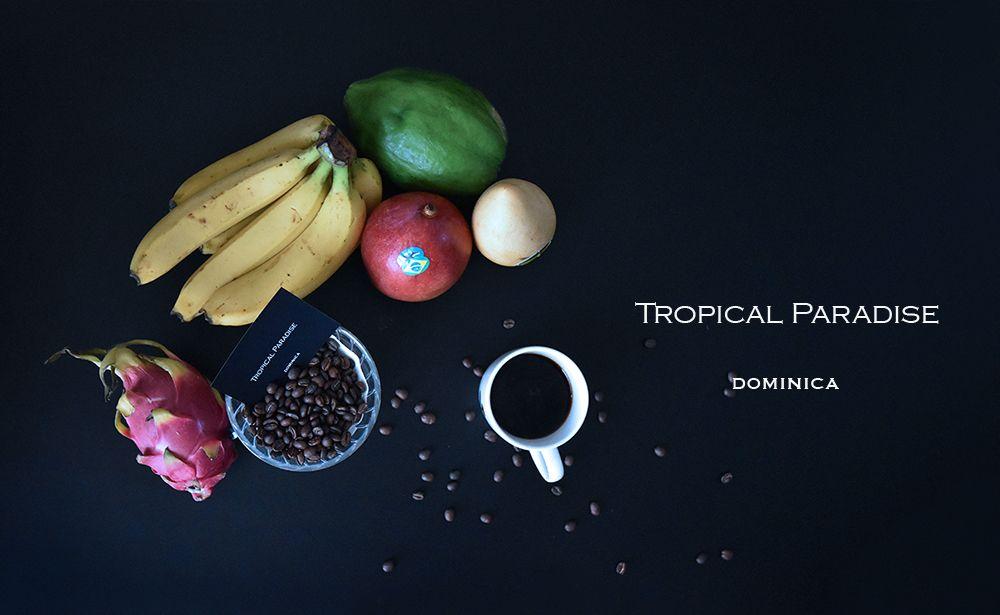 ドミニカ トロピカルパラダイス ニュークロップ